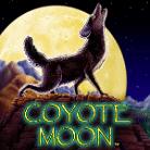 coyote moon-topbritishcasinos