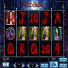 Wild Blood-topbritishcasinos